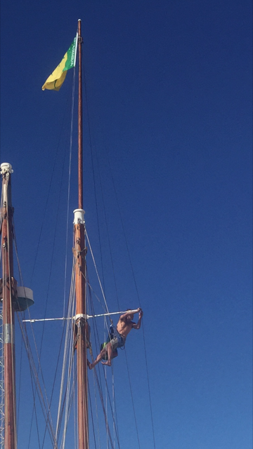 The junky rigged rigger