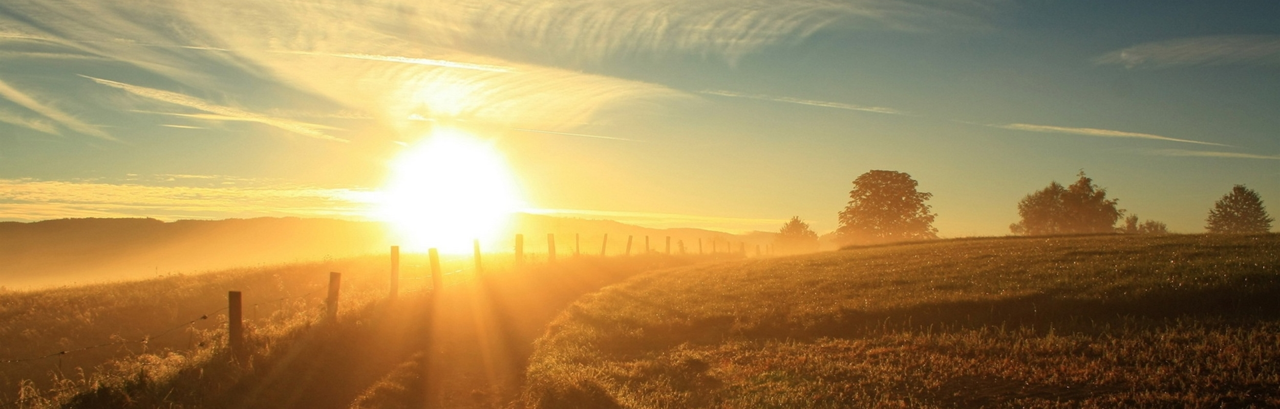 sun_light_dazzle_expensive_country_fence_53964_2560x1600.jpg