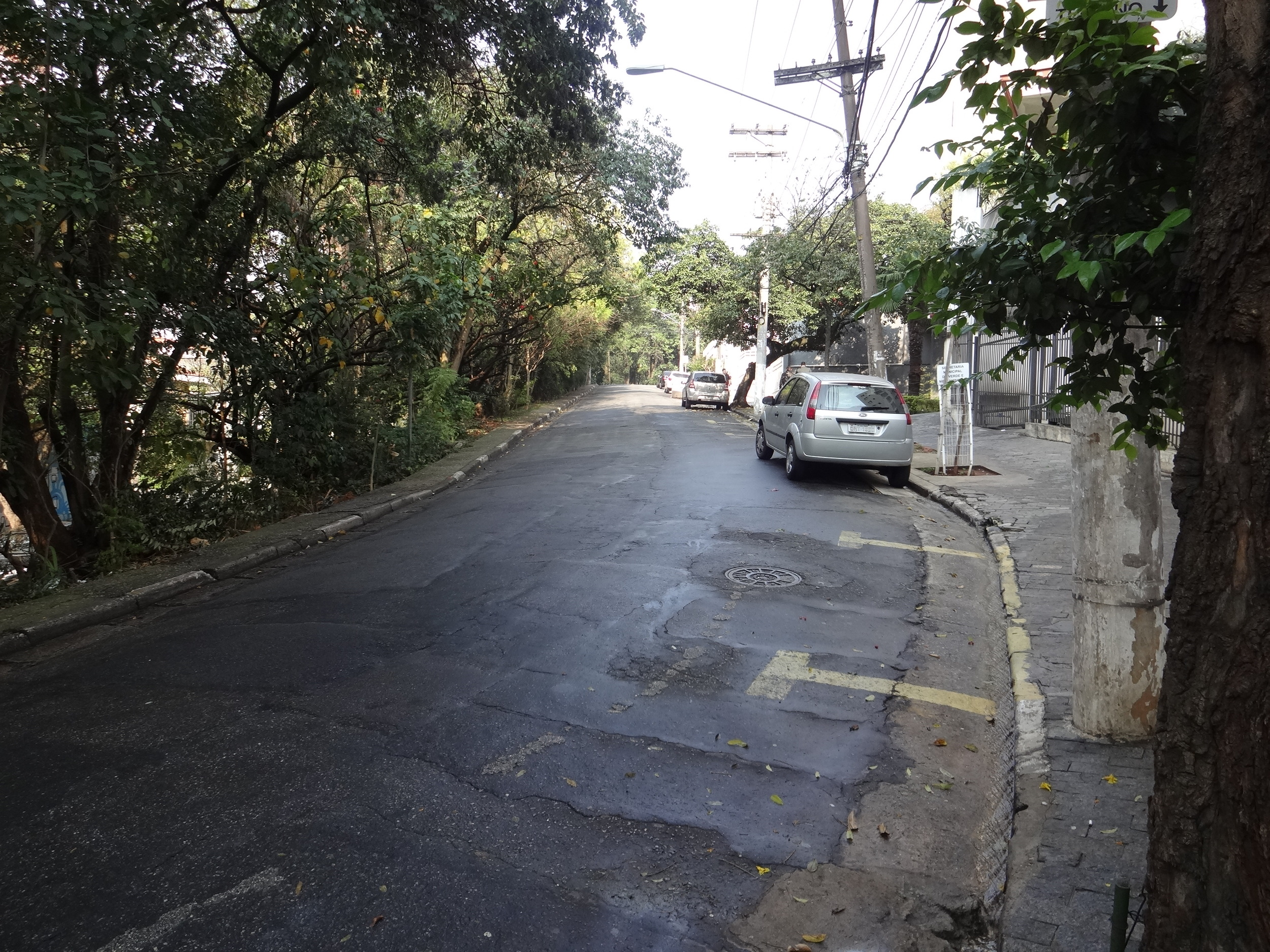 A typical street in Vila Madalena and about a 5 minute walk from my hostel.