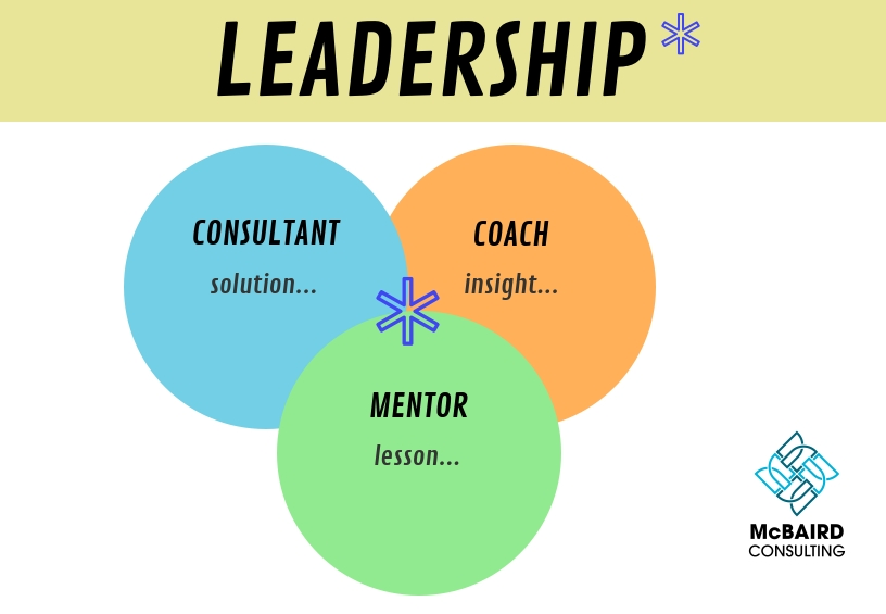 Leadership involves knowing when to provide a Solution, a Lesson, or an Insight.