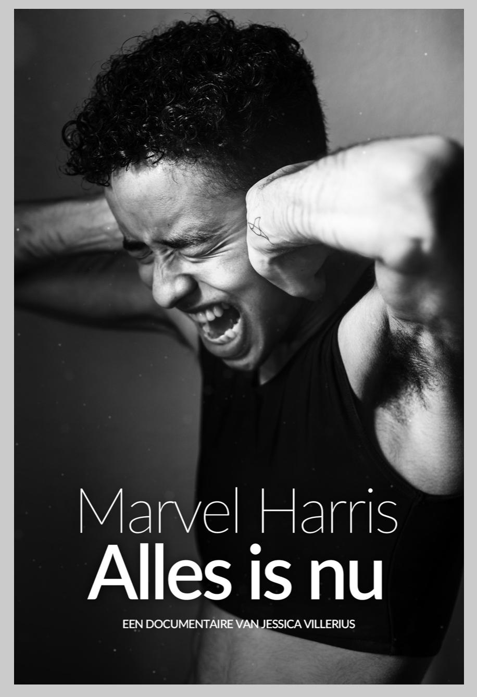 Alles-is-Nu_Marvel-Harris_ident_Jessica-Villerius.png