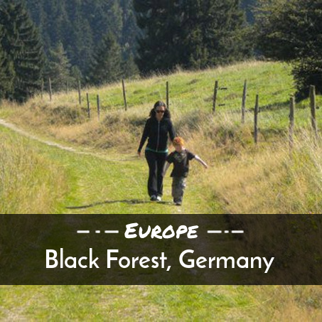 Black-Forest-Germany-Europe.png