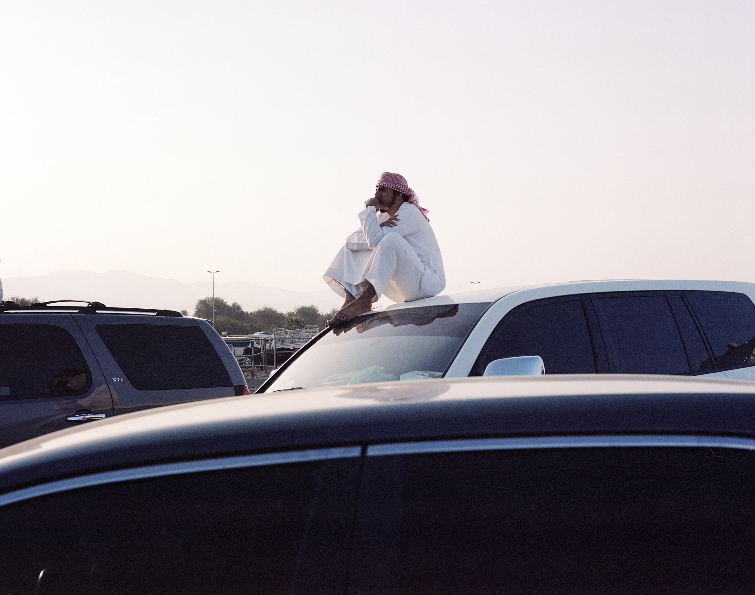A man watching a bull fighting match in Fujairah from this car, 2017-