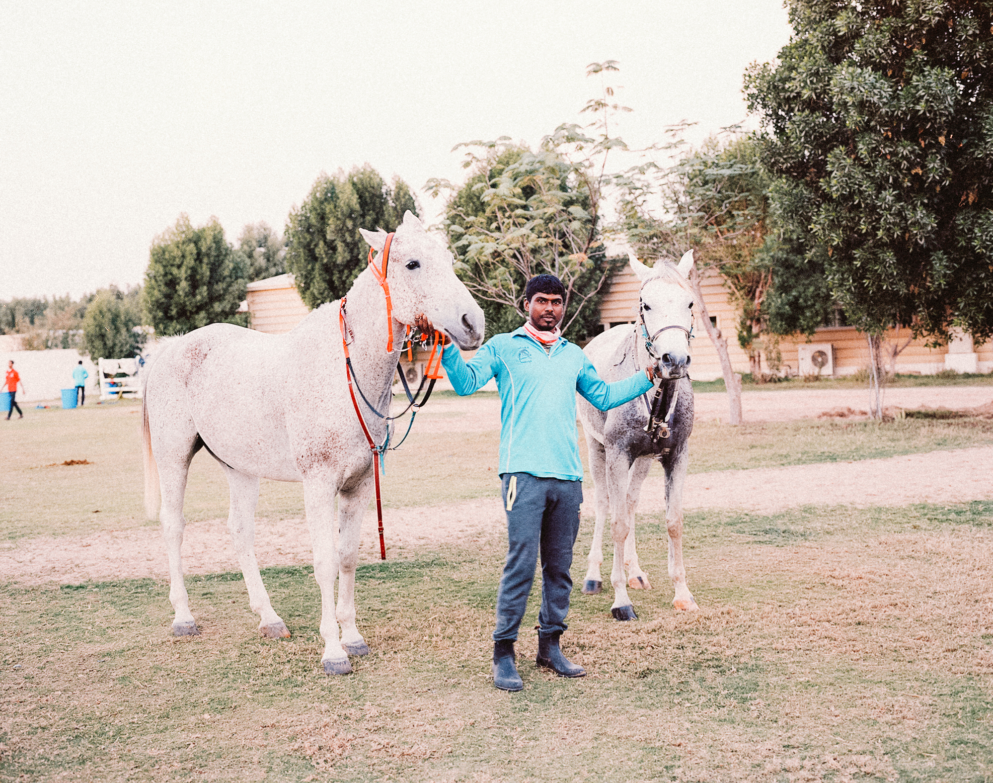 A Horseman from India working at a horse stables in Dubai, 2017