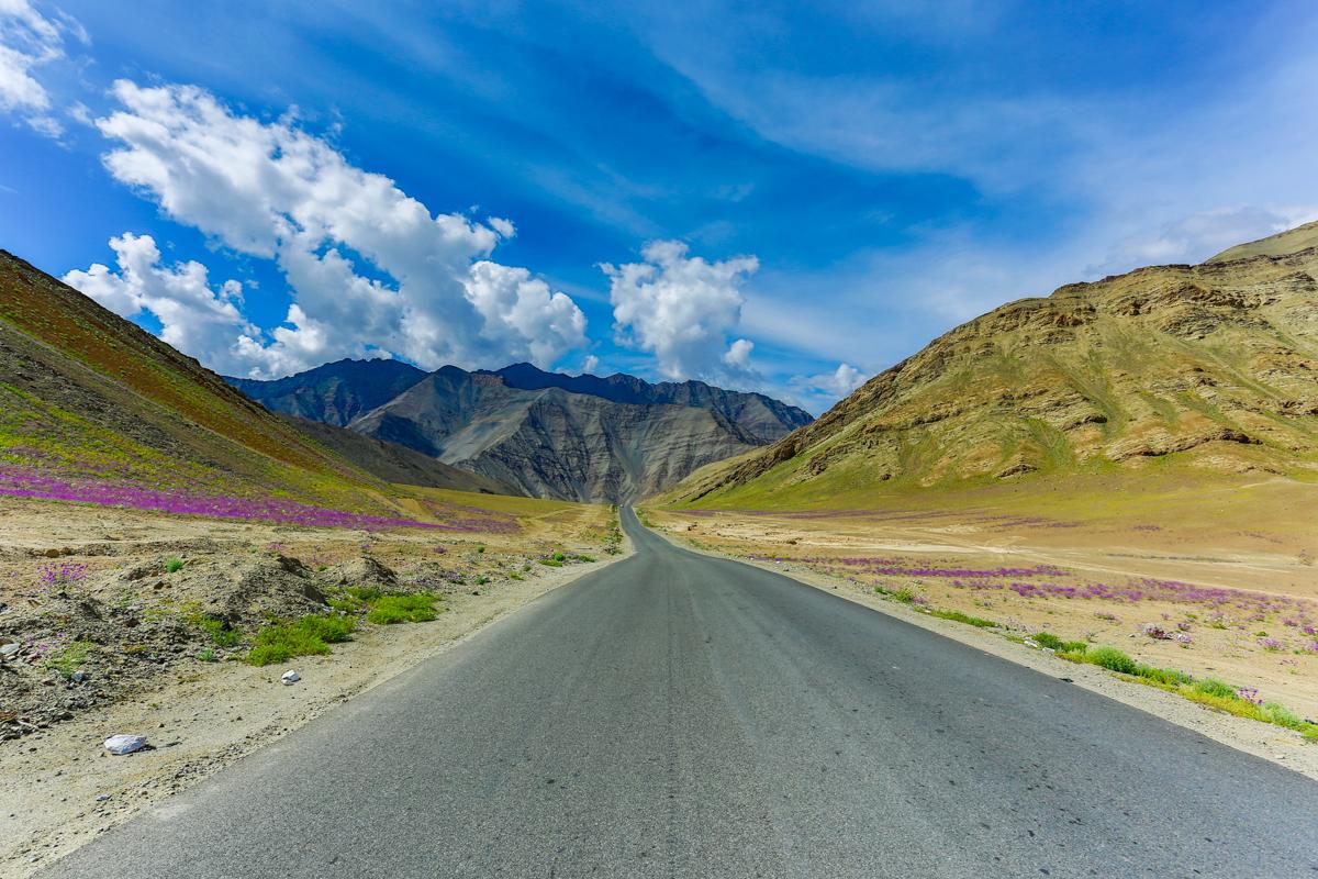 Leh-Srinagar Highway  Canon 5D Mark iii, Canon 17-40mm f4 L @ 17mm, f11 1/200 sec ISO 100