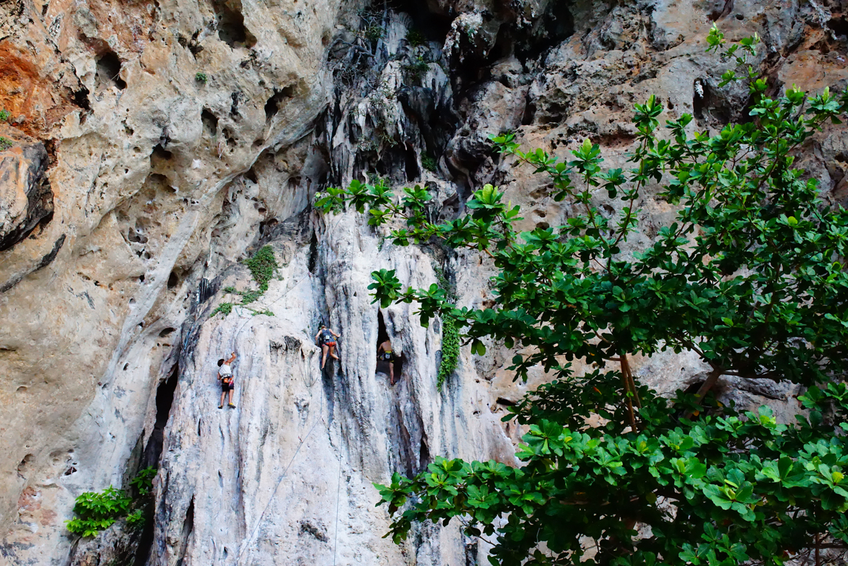 Rock Climbing at Krabi