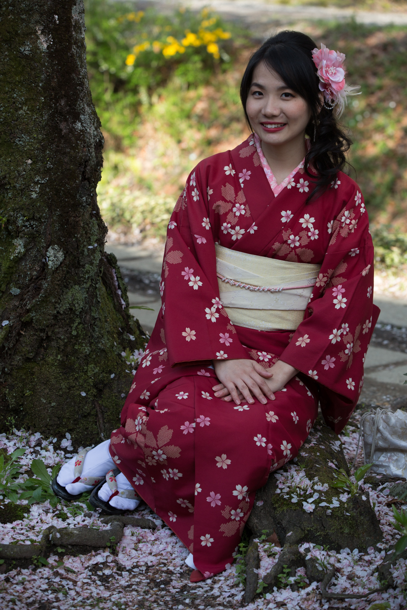 Japanese Girl in Traditional Kimono as part of the Spring Celebrations