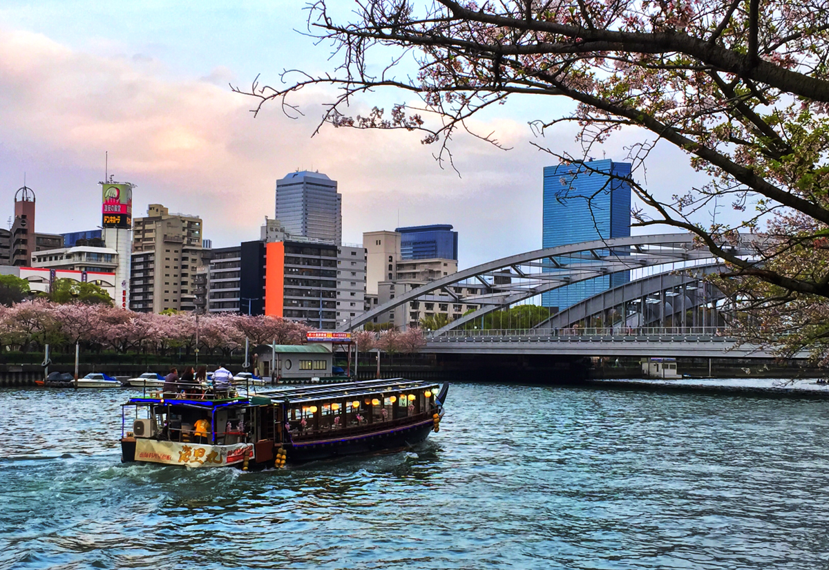 Osaka River cruises are a great way to take in the Cherry Blossom trees lining the riverside