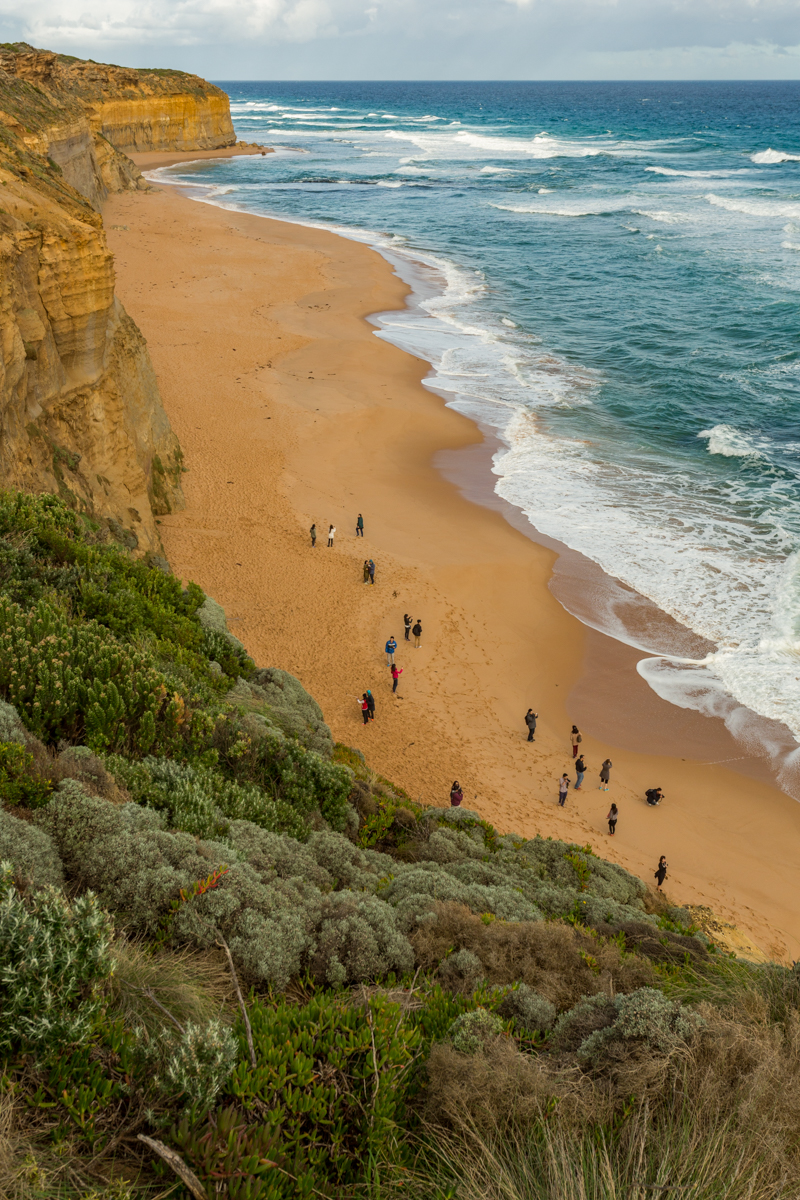 At Gibsons Steps near the 12 Apostles