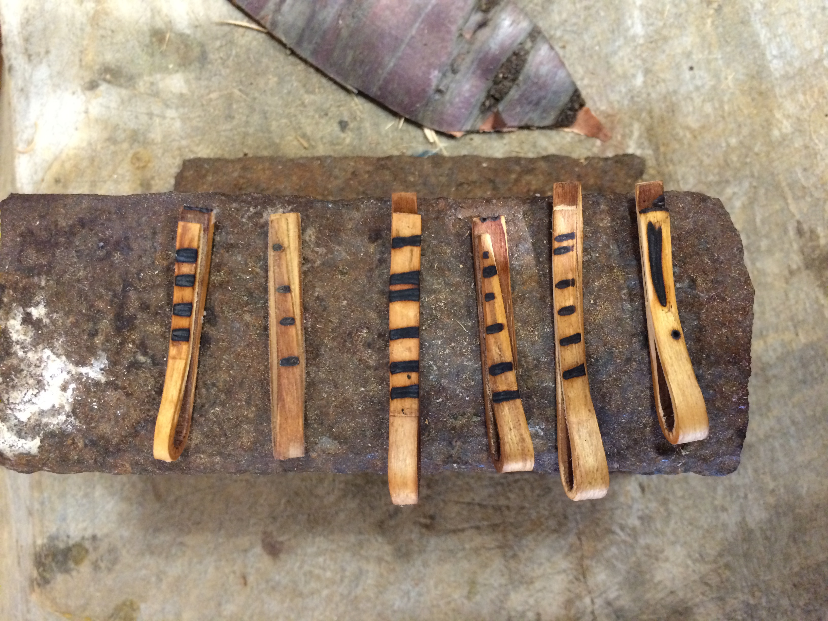 Hickory Bark Clips