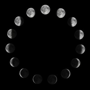 moonphases.JPG