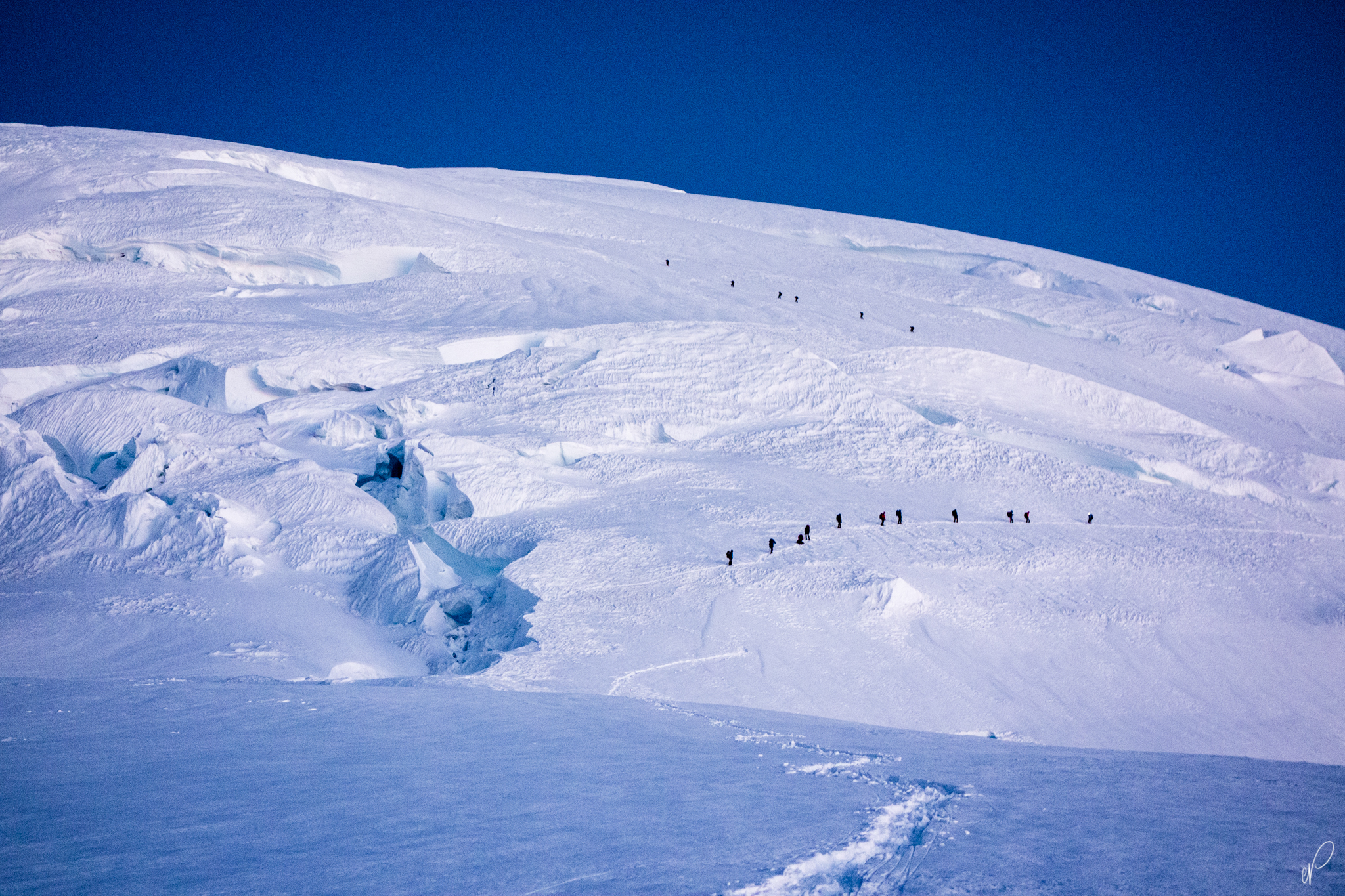Two groups ahead of us make their summit bids on the Emmons Glacier