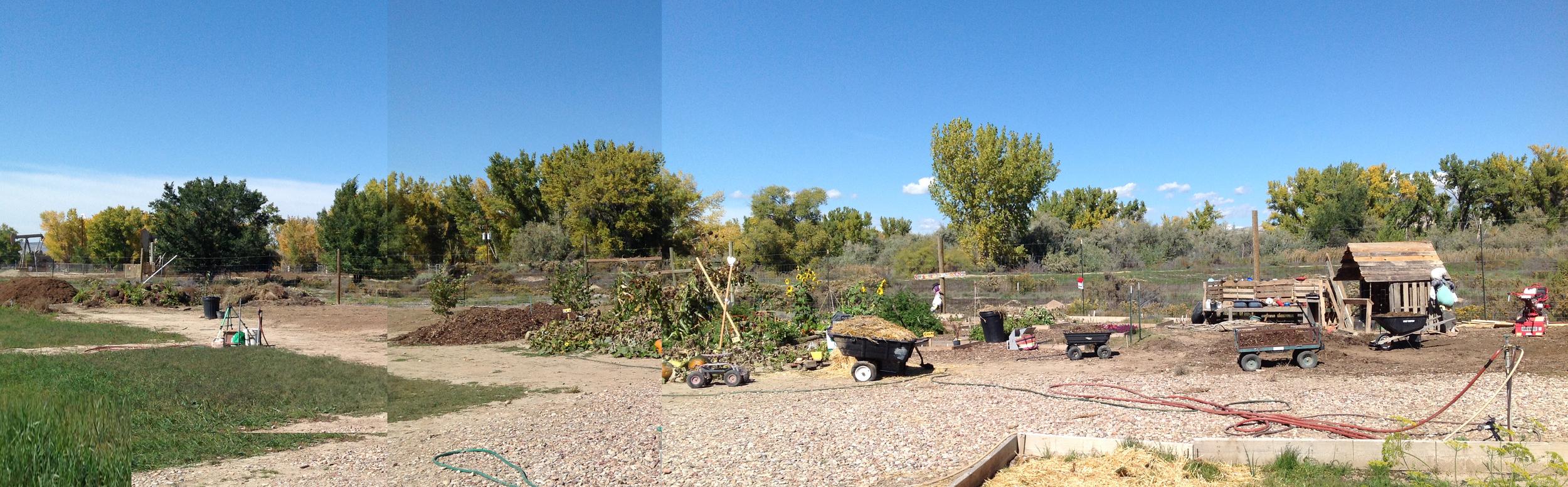 Childrens Garden expansion (2).jpg