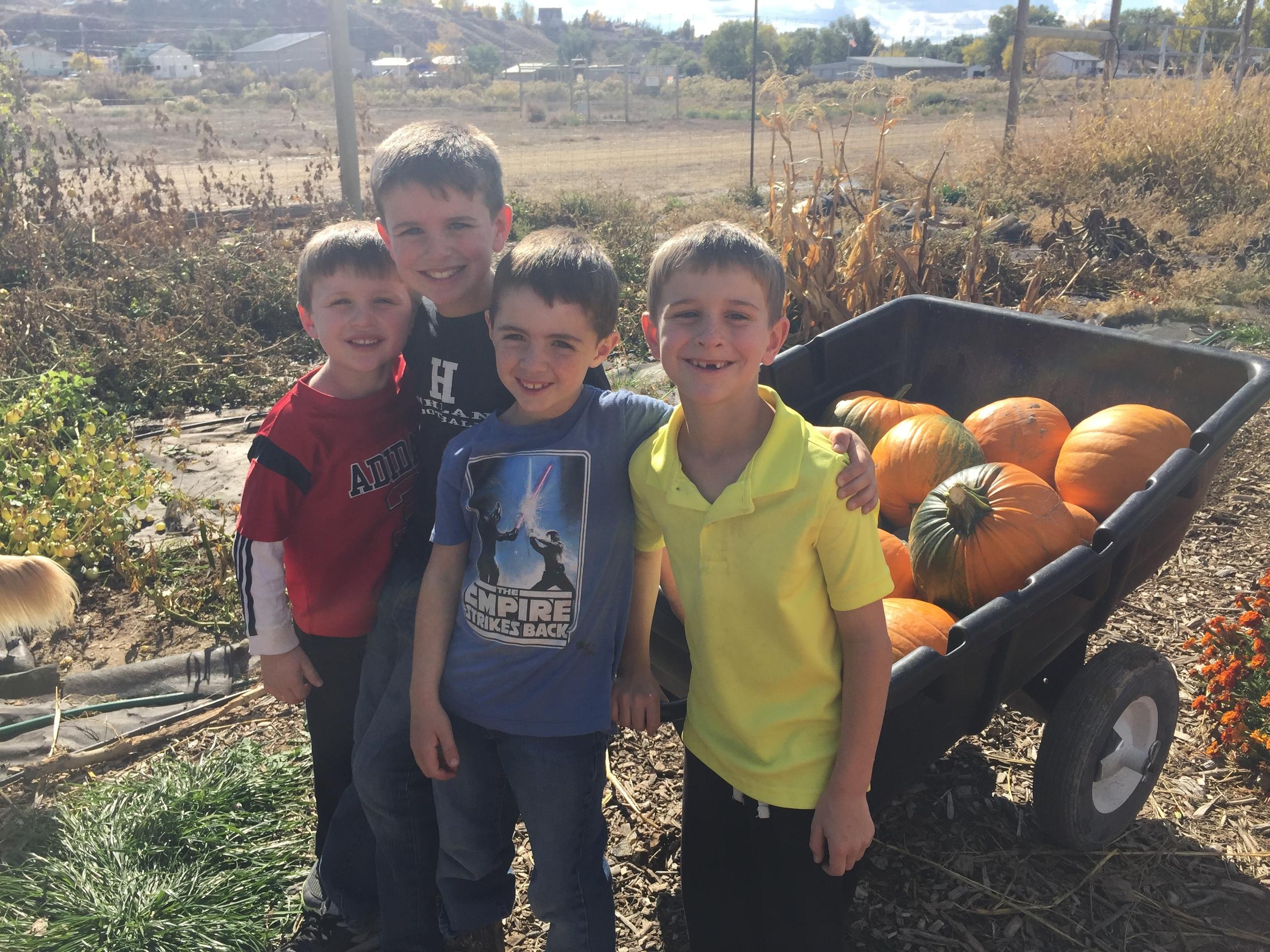 Pumpkins 2015-10-23 121.JPG