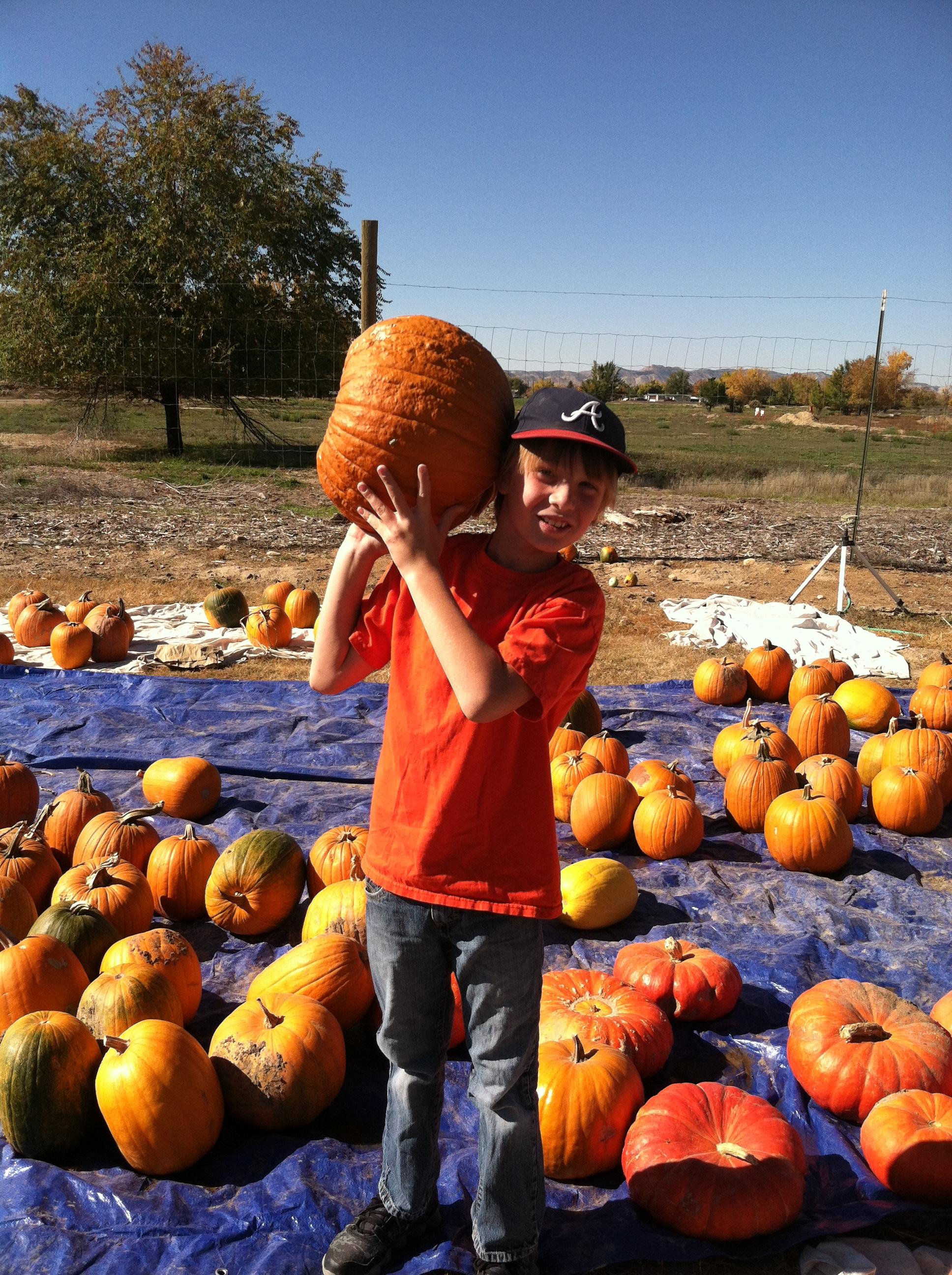 pumpkins and leadertrek 2014-10-25 043.JPG