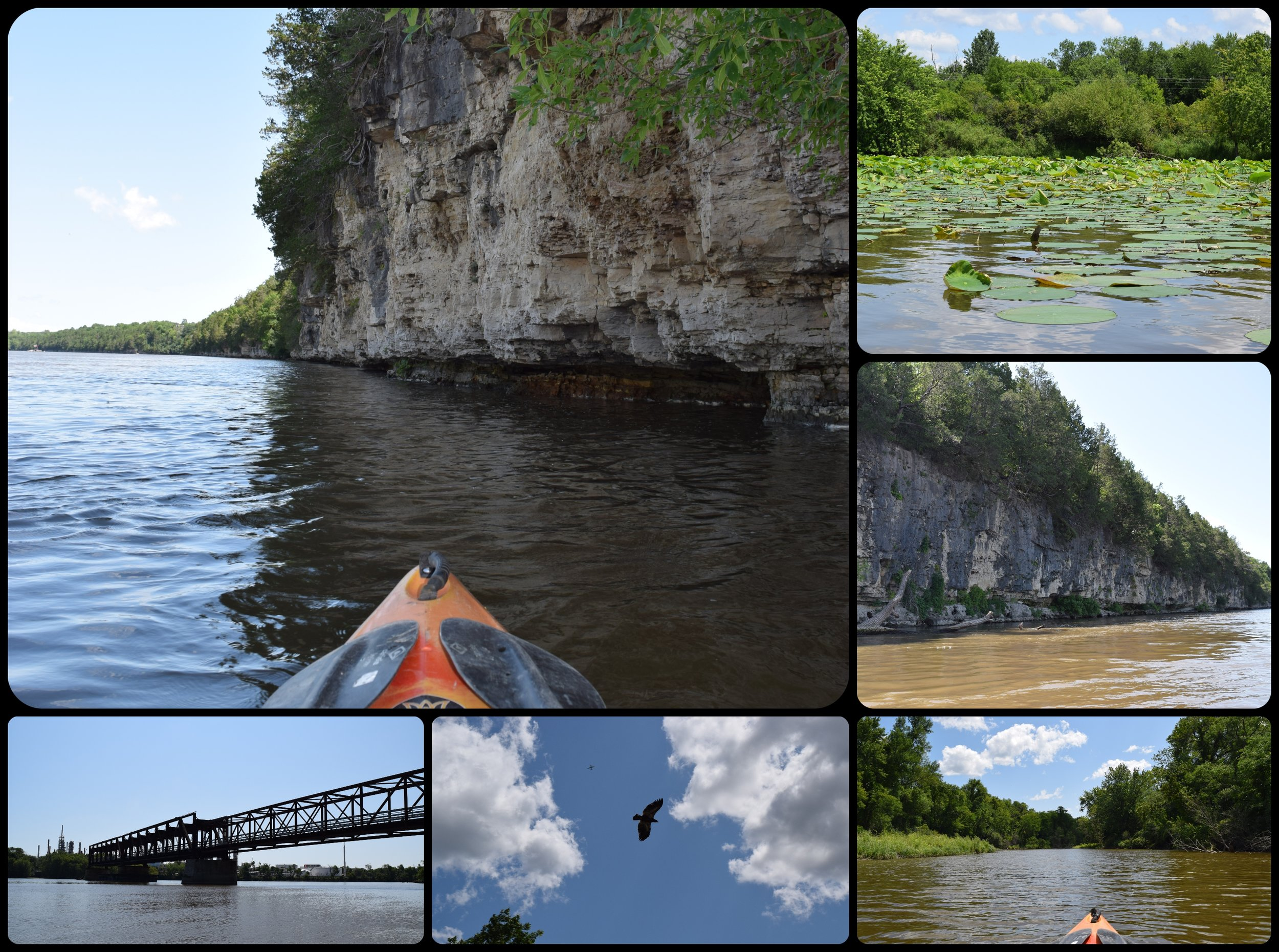 Lower Mississippi River Tour - Explore the bluffs, sandbars & backwaters of the lower Mississippi River from Mississippi Pub down to Grey Cloud Island on this paddle and pub tour.