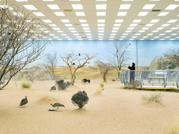 aviary,45x60, flat_web.jpg
