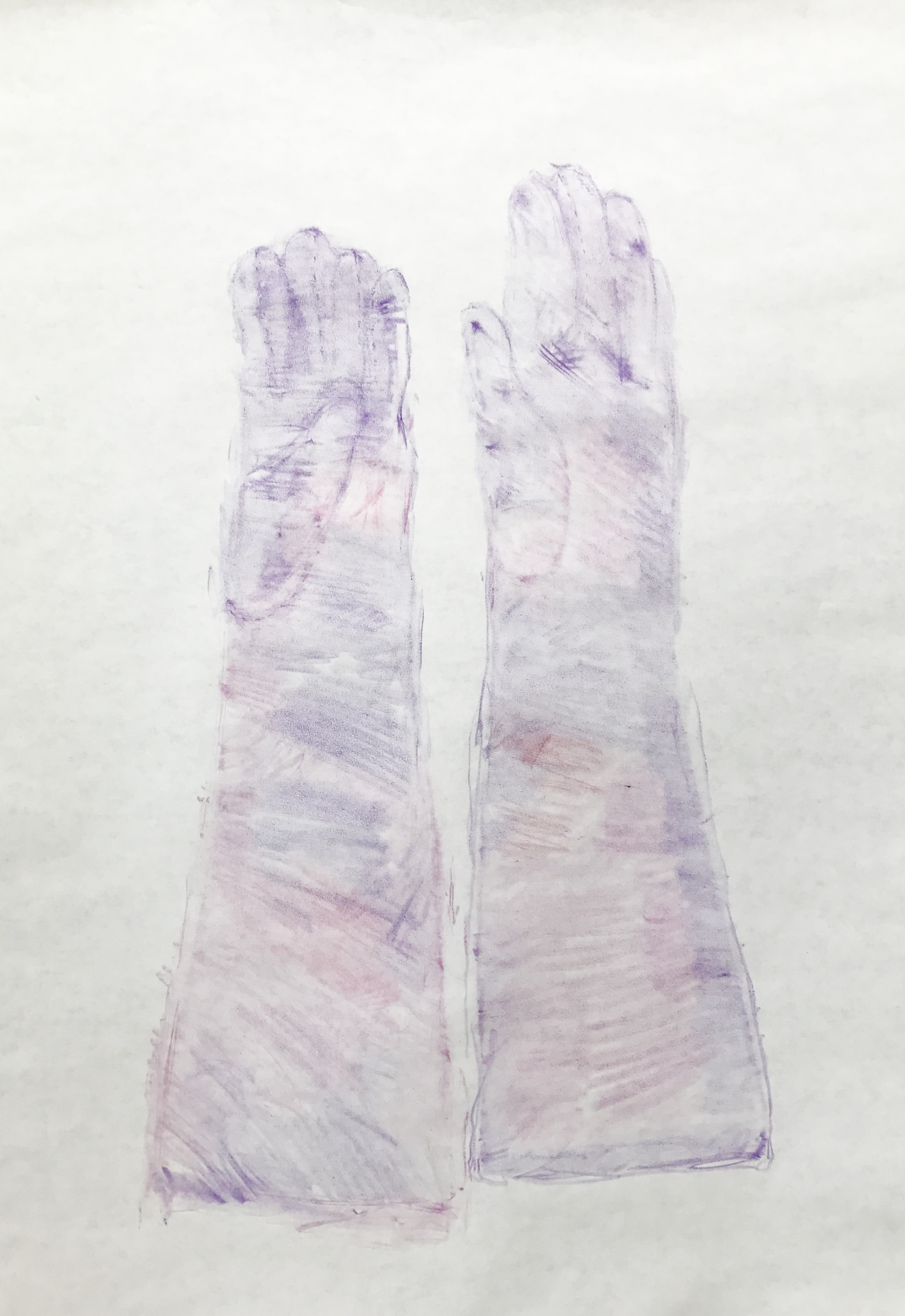 long violet gloves.jpg