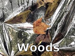 Button_Woods_2126_auto_265x199_Verdana01.png