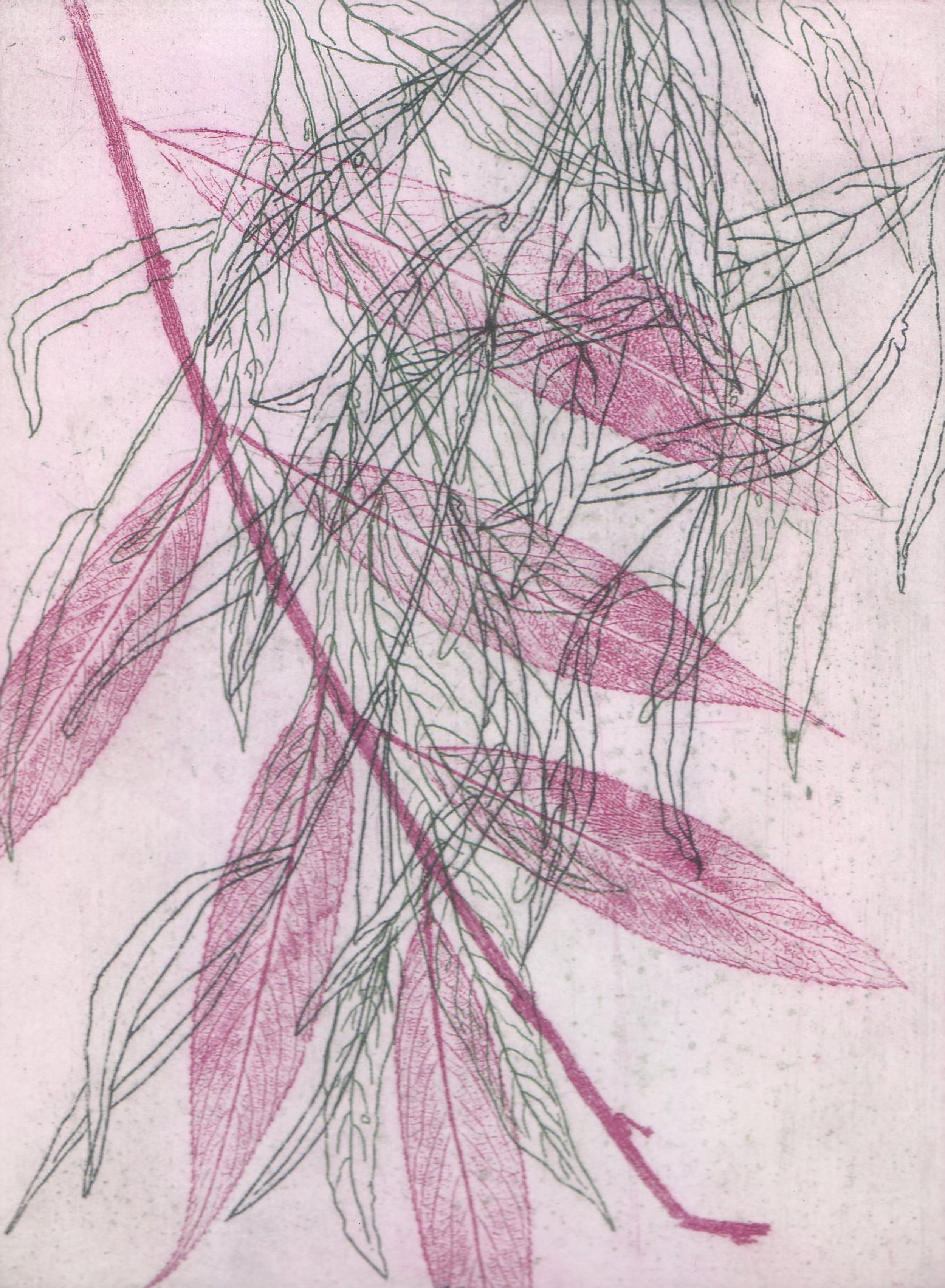 Willow branches(pink).jpg