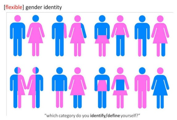 "[image description: Script at the top states, ""[flexible] gender identity."" Script at the bottom states, ""which category do you identify/define yourself?"" The image is of 8 pairs of figures. They are combinations of pink and blue. Each image plays with the original ""Men"" and ""Women"" icon used for restrooms, but are not as simple. They mix and match parts of the ""Men"" icon with the ""Women"" icon demonstrating different experiences of male/female experiences in different ratios.]"