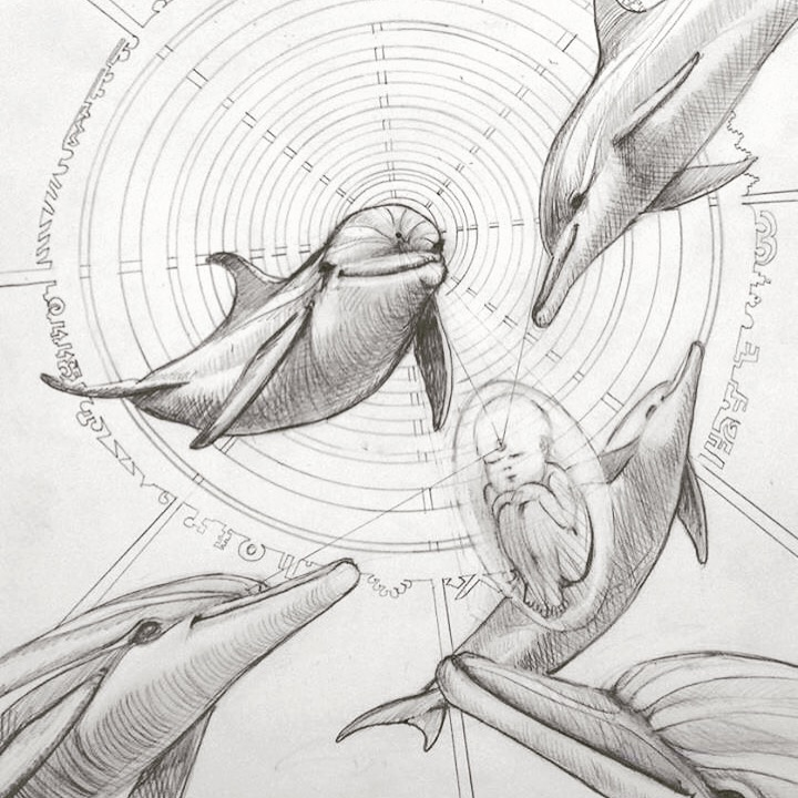 """Drawing by """"Dolphin"""" Dave Jimenez"""