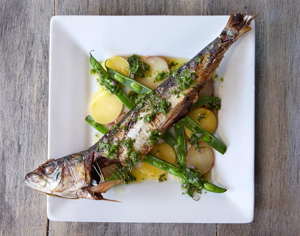 Hazel_June_2015_Fish_Dish.png