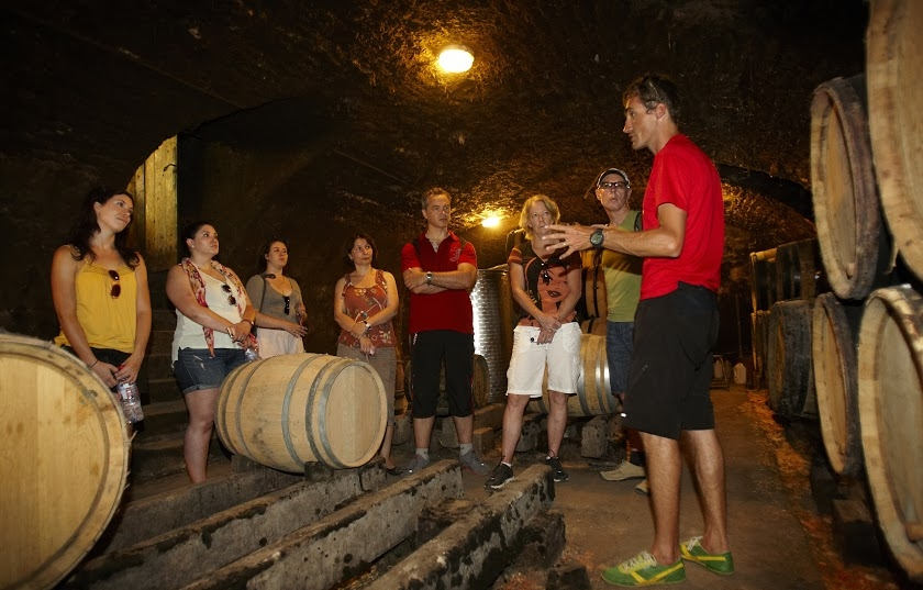 Burgundy wine cycling cave.jpg