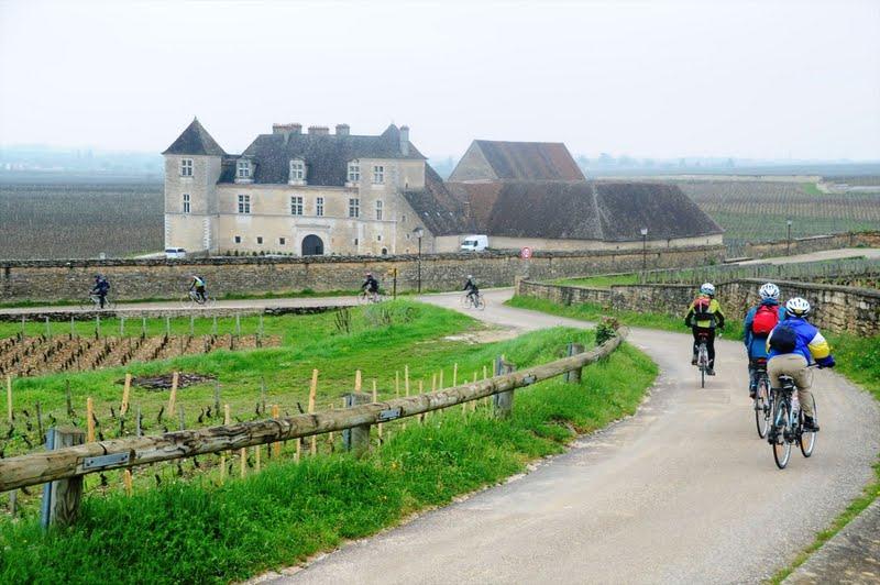 Burgundy Cycling.JPG
