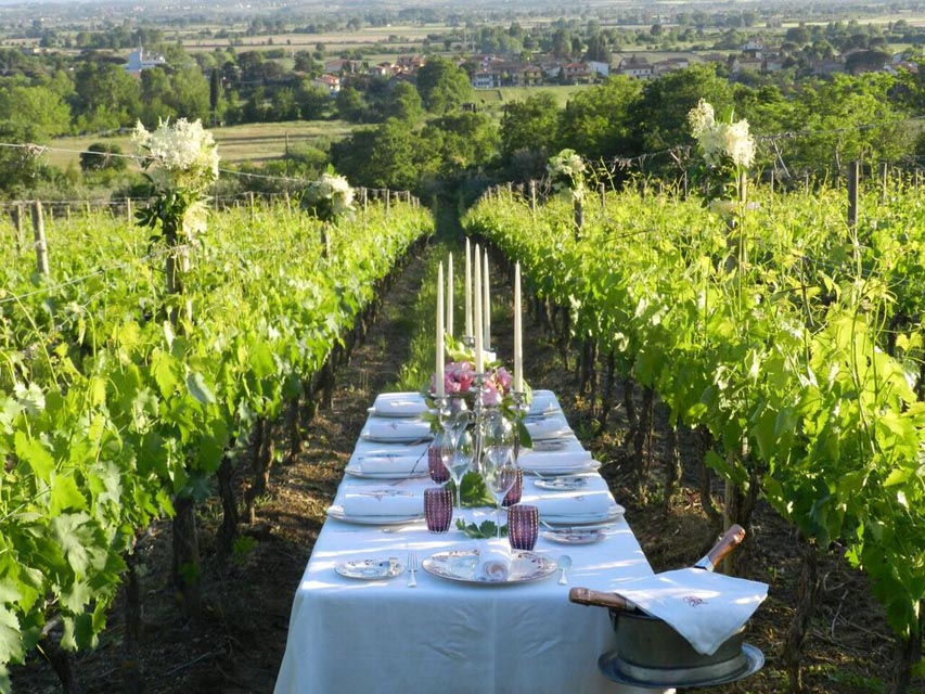 TIK_Cooking_under_the_Tuscan_Sun_dining_in_the_vineard.jpg