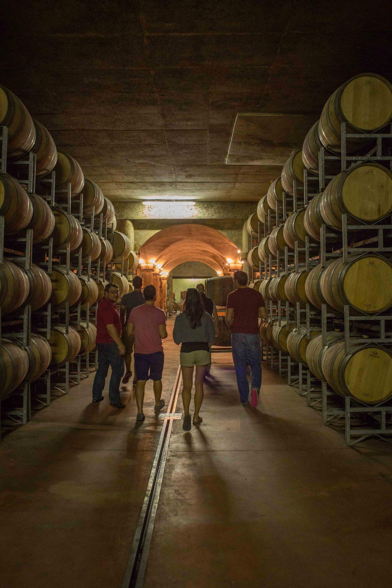 The cellars at Avondale