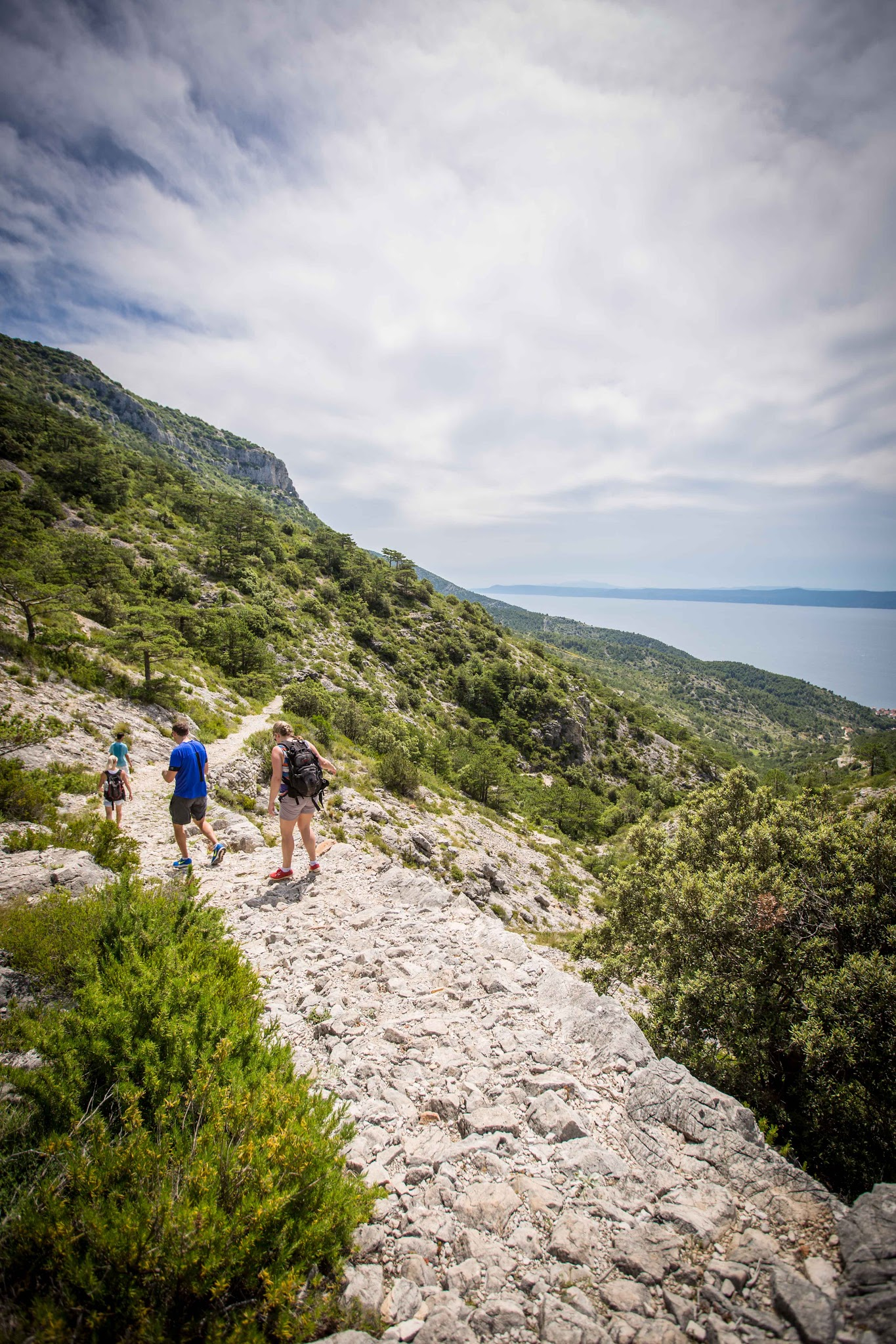 Path to Vidowa Gora Bol