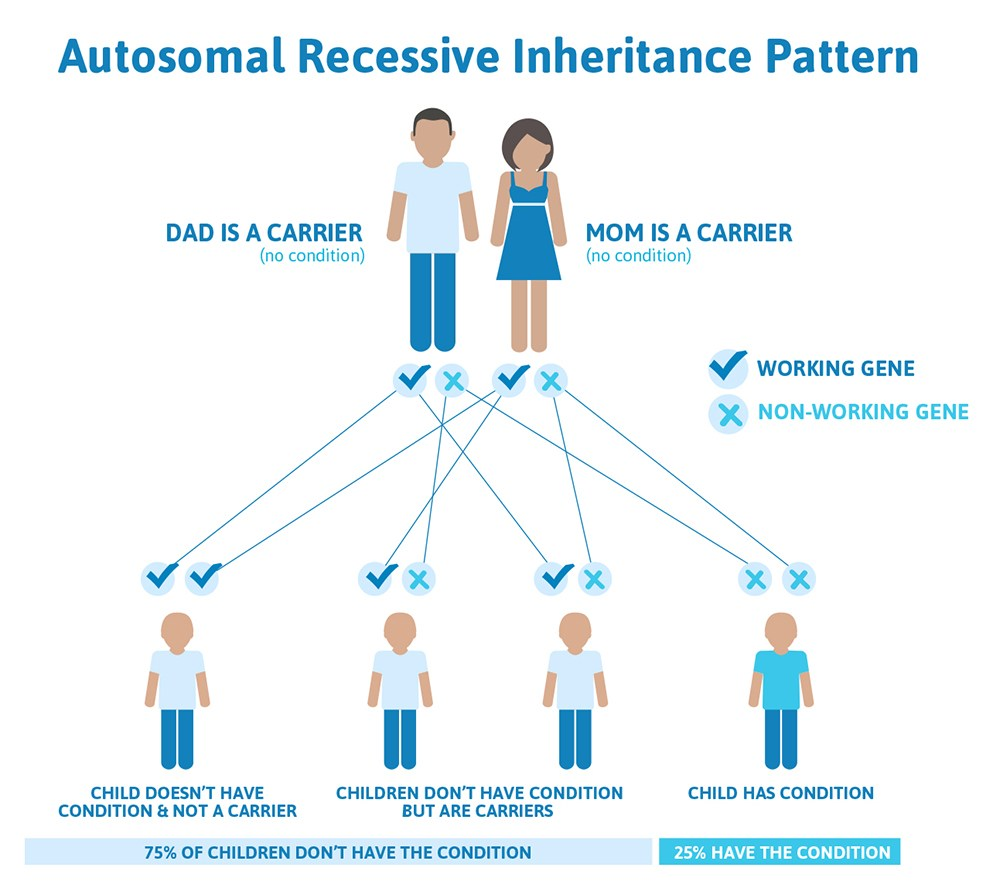 autosomal_recessive_inheritance_pattern.jpg