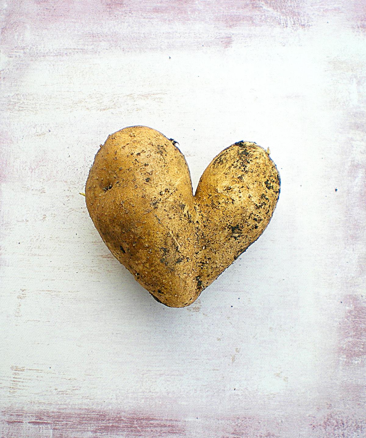 heartpotato_IMGP0145.jpg