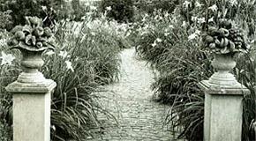 Restored gardens outside of Phipps Conservatory