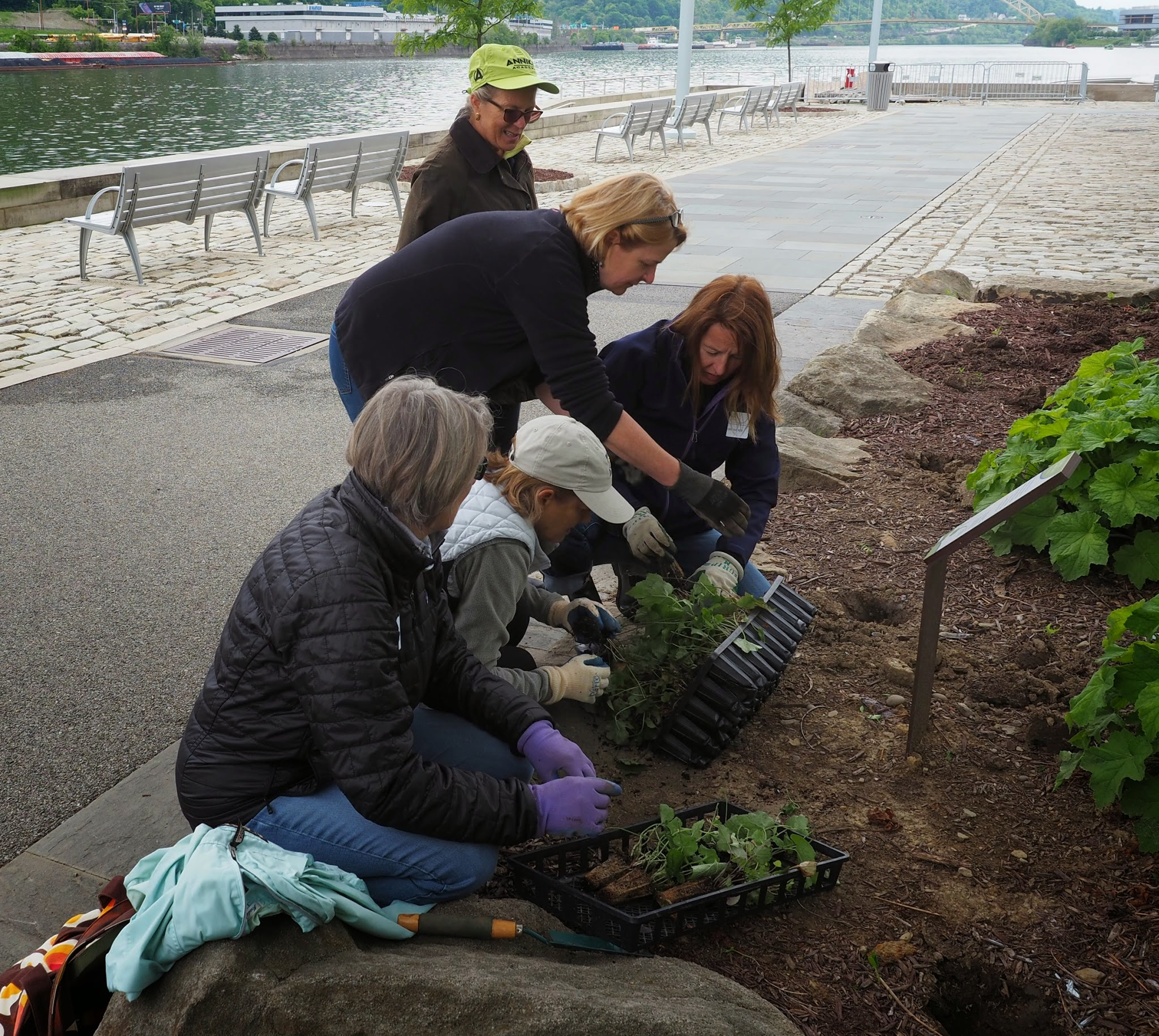 Point State Park Native Planting Project
