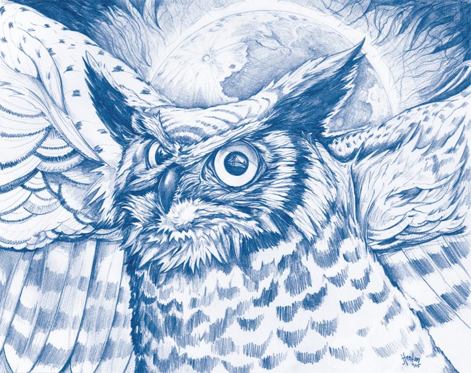 SWEAGA_OktaAura_Owl.jpg
