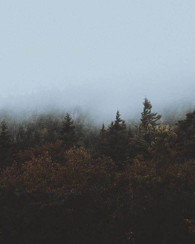 Dear weather,  More fog please. • • • • • #simplyadventure #travelstoke #keepitwild #roamtheplanet #wearestillwild #aov #watchthisinstagood #alifealive #stayandwander #wildernessculture #seeyououtthere #neverstopexploring #wherewillwegonext #mkexplore #letsgosomewhere #adventuretillwedie #hbouthere #igersmaine #igersnewengland #mainetheway #vsco #liveauthentic #getoutstayout #capturemaine #maineisgorgeous #mainething