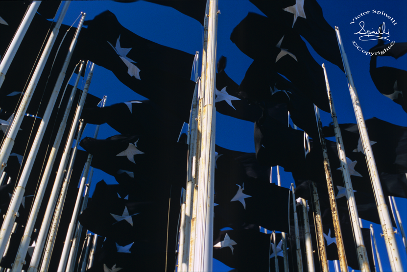 """Before the U.S.A. raised our Yankee flag today for the first time in 54 years, thus starting a new neighborly relationship with Cuba, Castro flew these 50 black flags with white stars in front of our """"Special Interest building"""" in defiance of the embargo. Time seems to be changing. ©Victor Spinelli Archive 2009"""