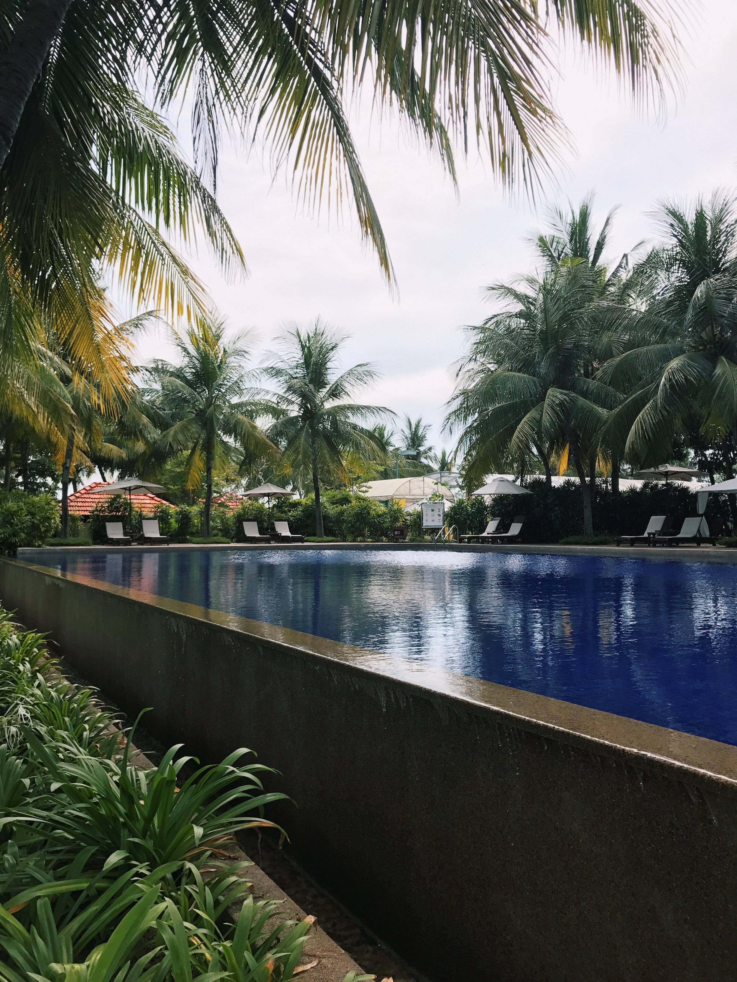 We checked in after an hour's drive from KL to PD and took a swim in the pool surrounded by shady palm trees and serenity.
