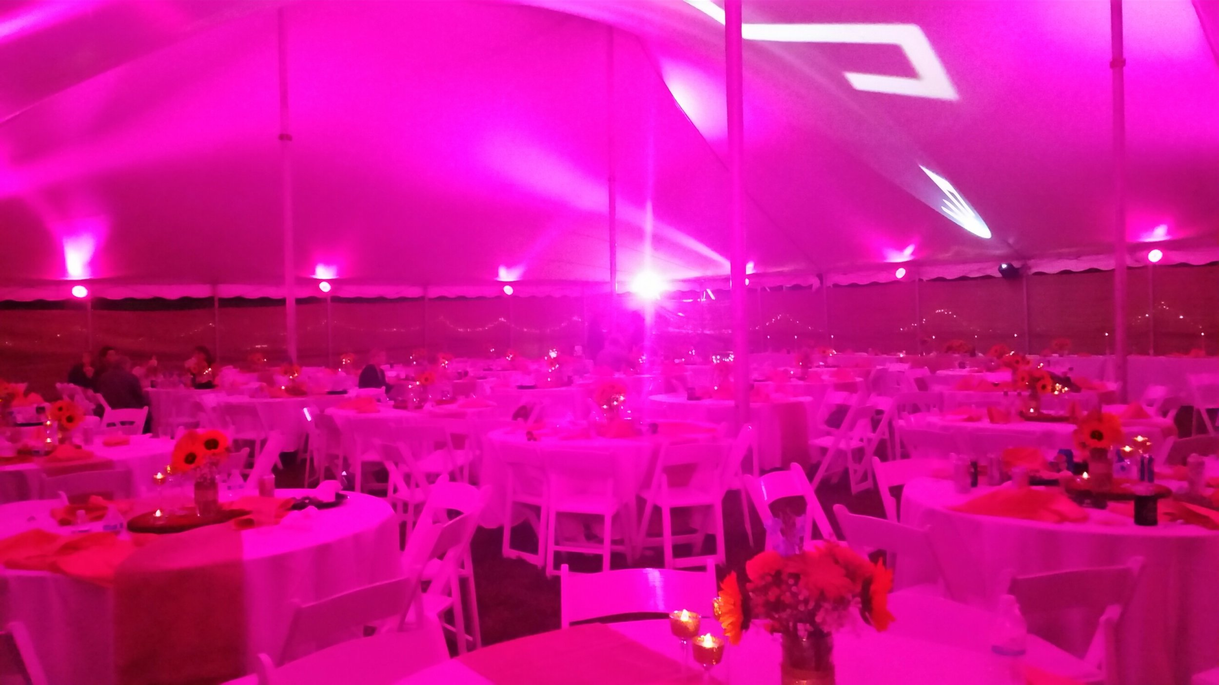 our lighting is in tents 1.jpg