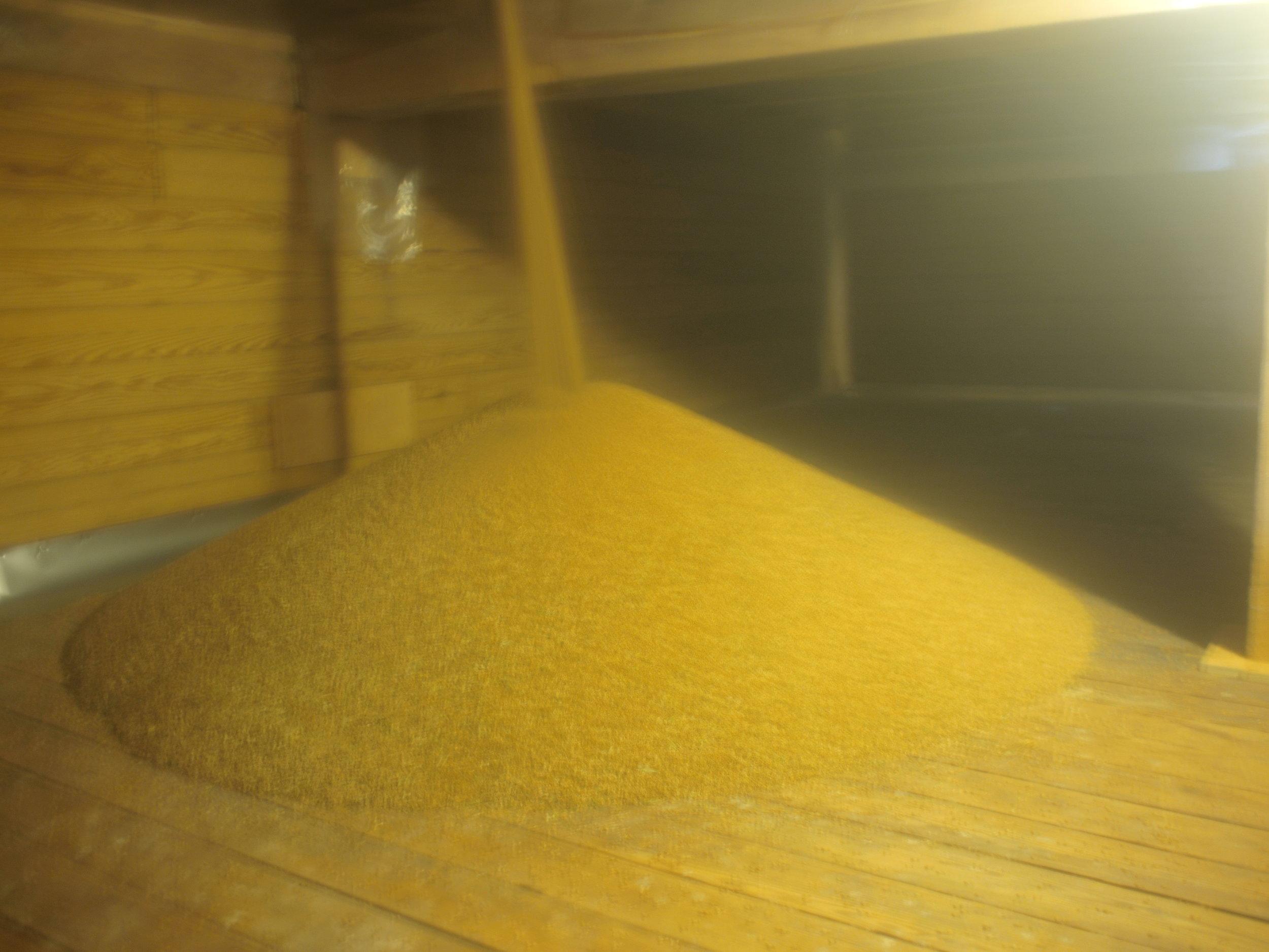 grain into storage lucky dog farm.JPG