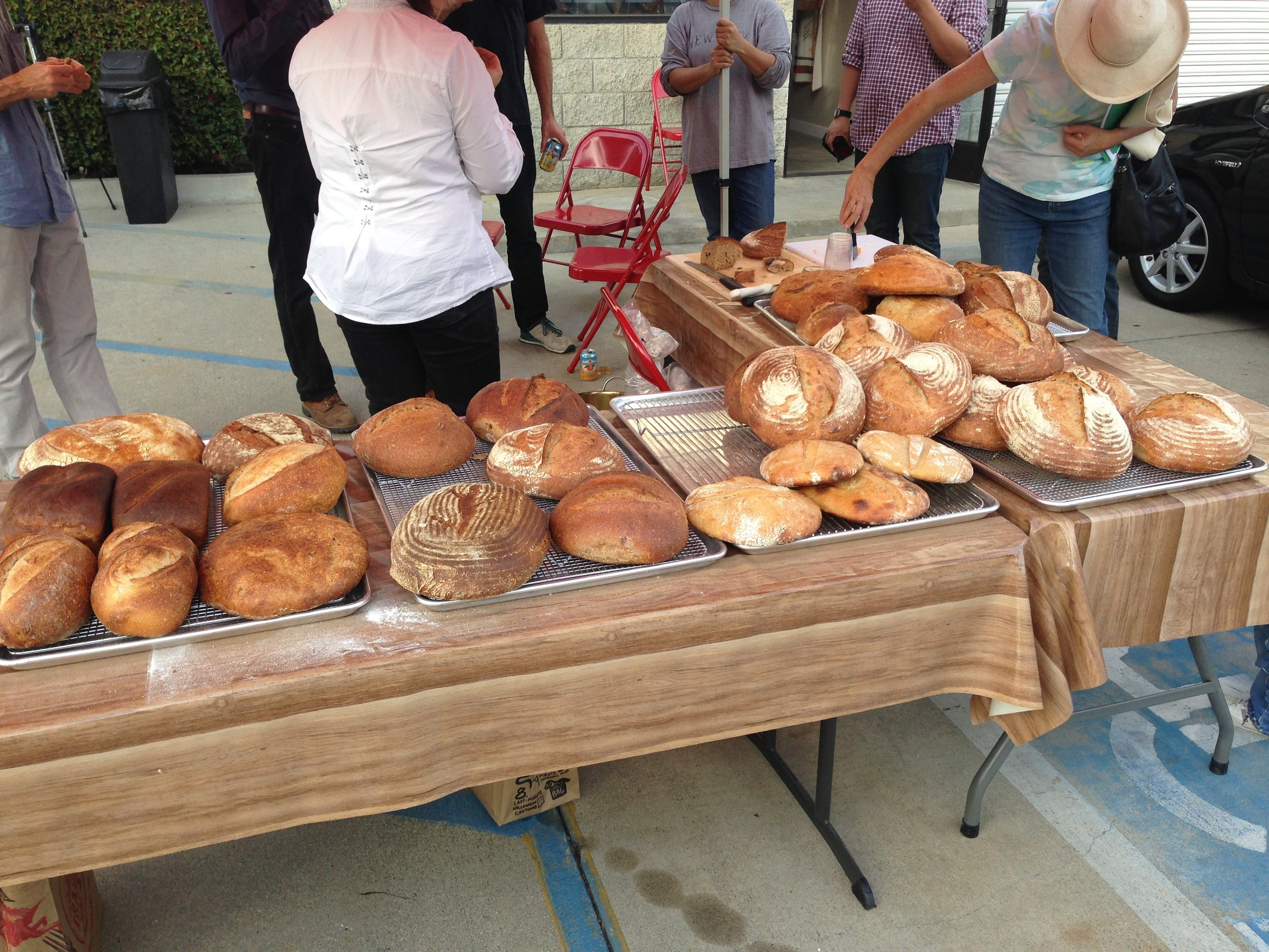grist and toll community bake thanksgiving bake for soup kitchens.JPG