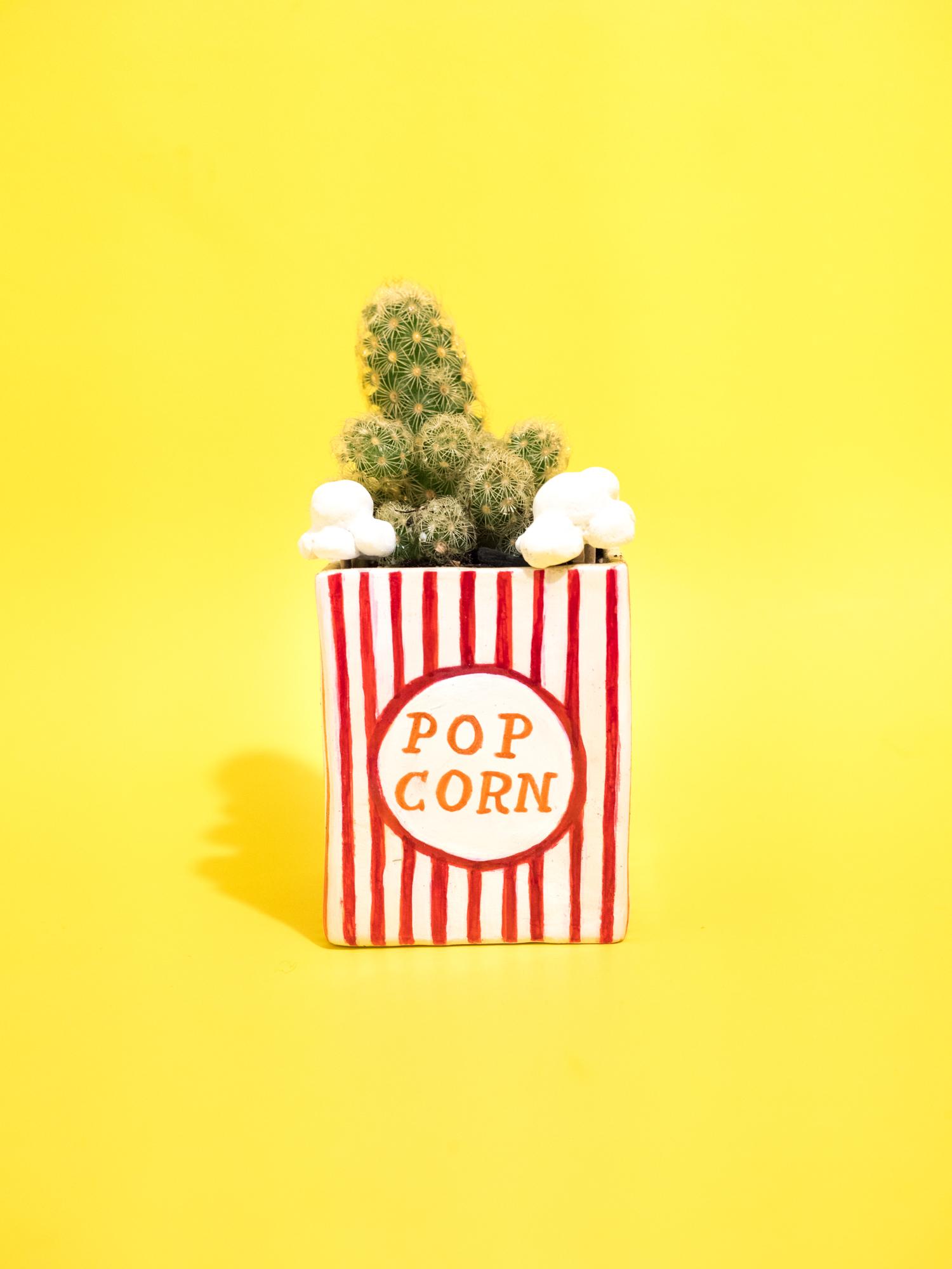 Popcorn-Succulent.jpg
