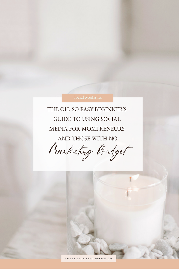 The Oh, So Easy Beginner's Guide To Using Social Media For Mompreneurs and Those With No Marketing Budget.png