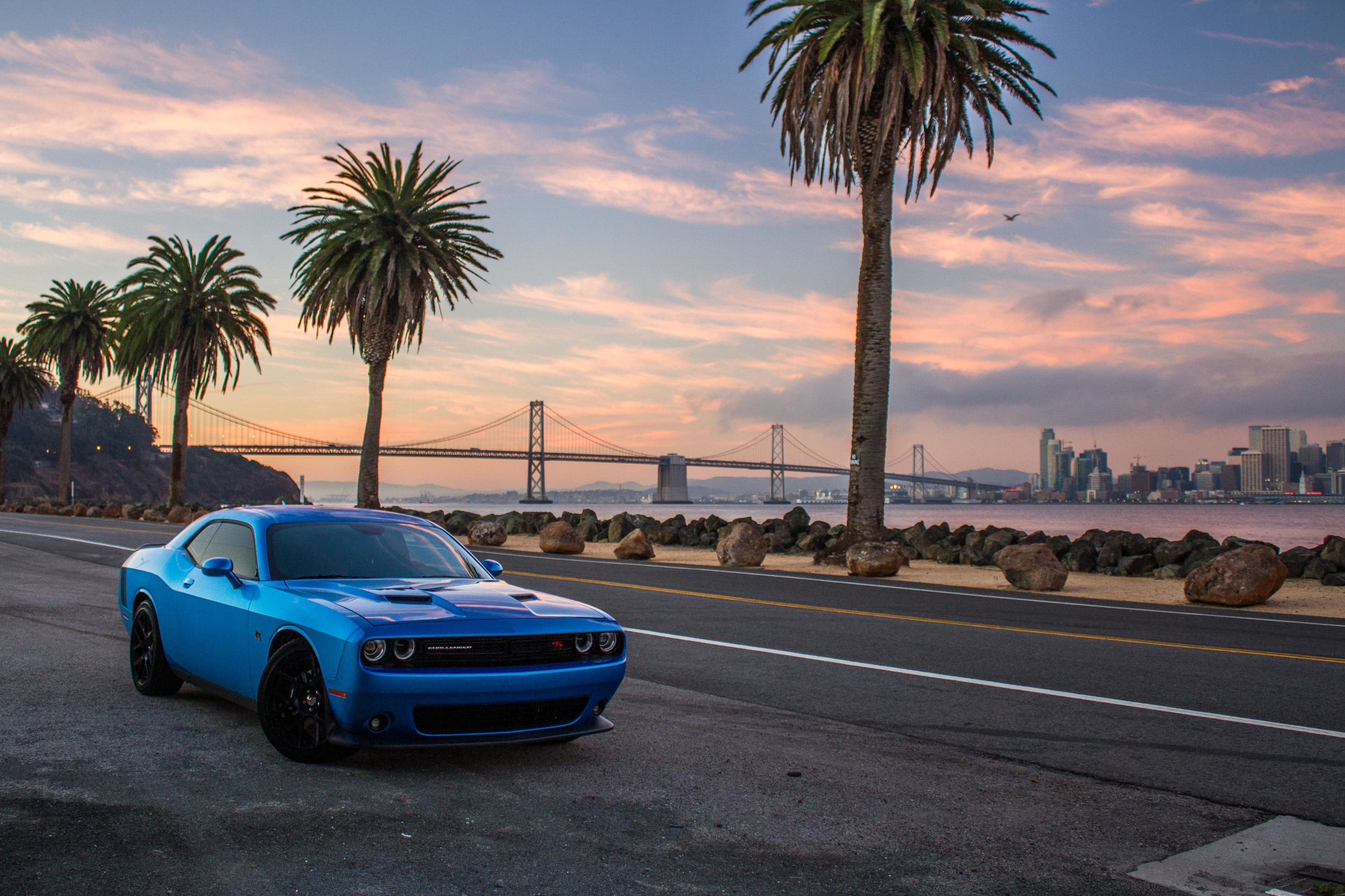 Dodge Challenger R/T parked on Avenue Of The Palms during sunrise.