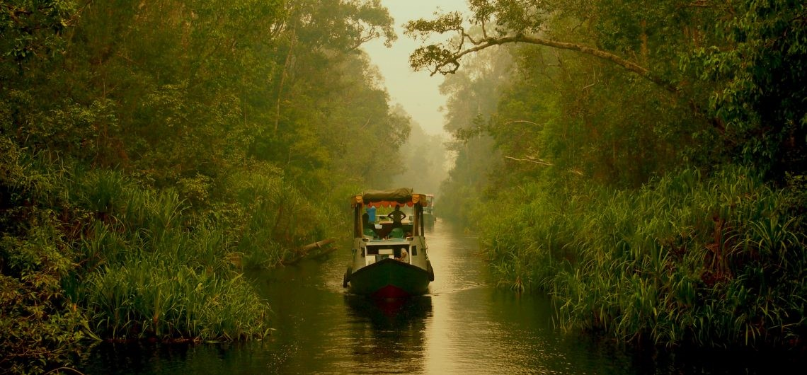 Tanjung Puting National Park, source : google