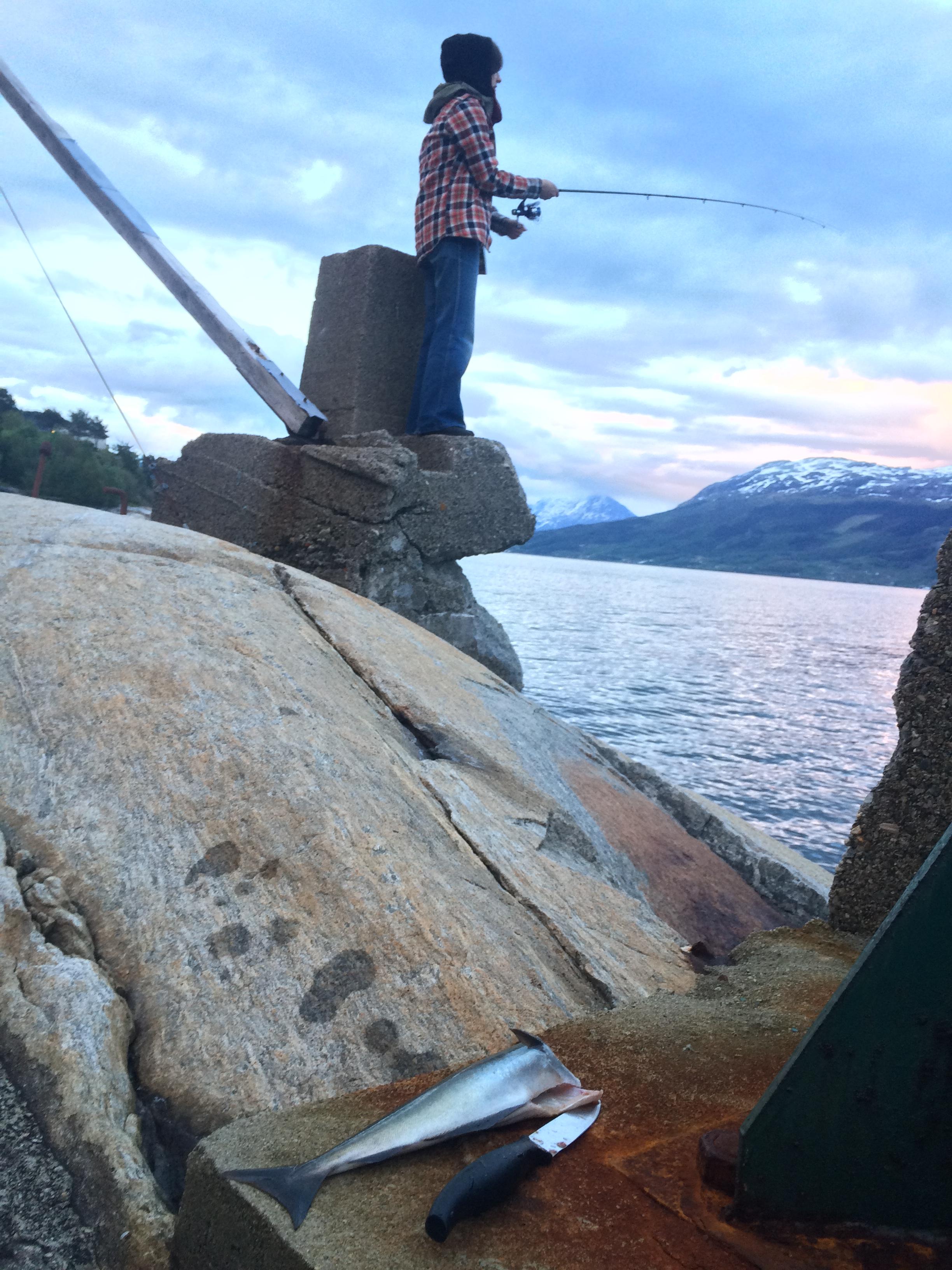 Midnattssei fra Hardangerfjorden. Foto: Susan Hughes