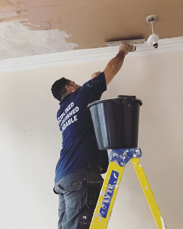 The best plasterer we know!