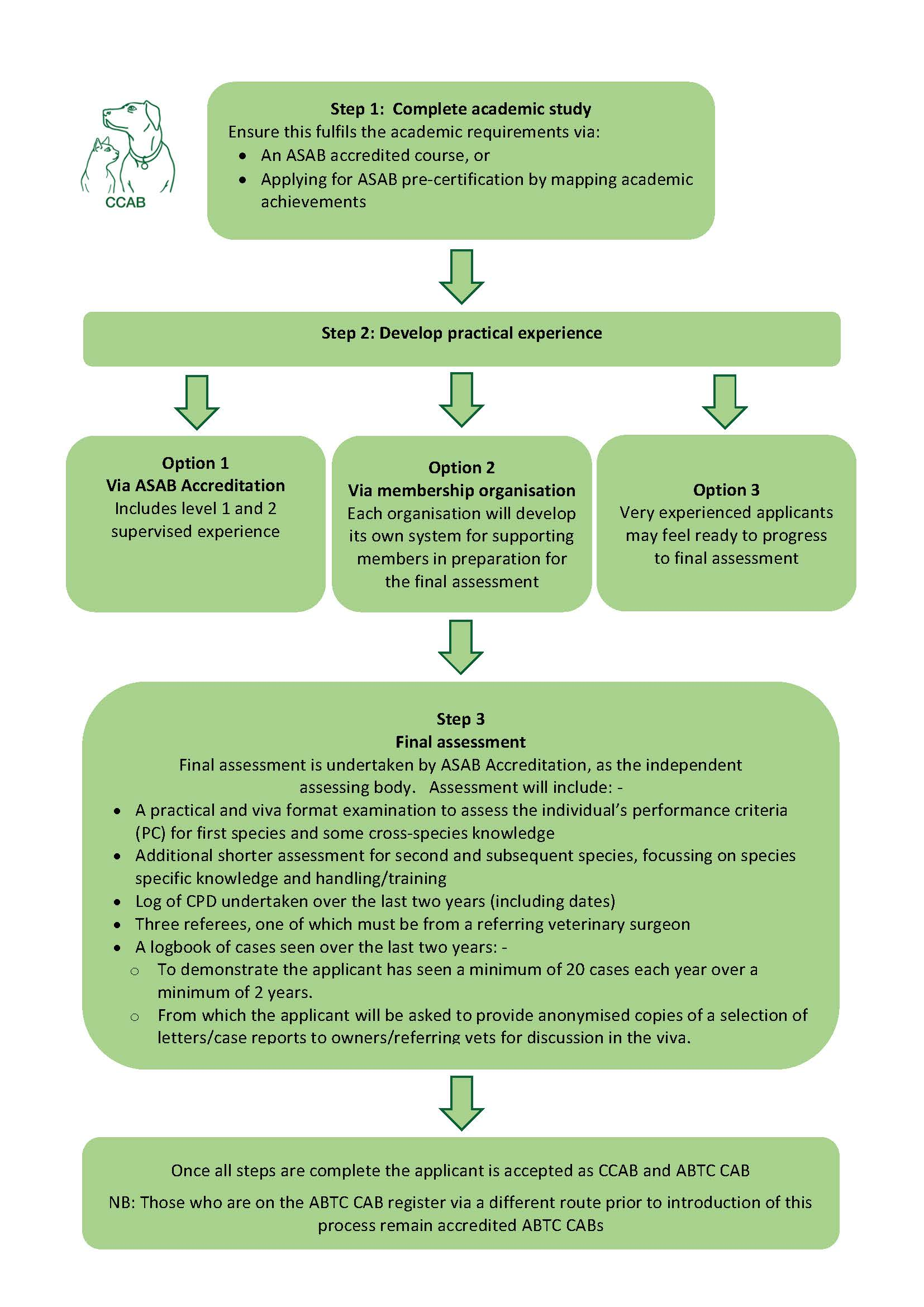 flowchart assessment options detail.jpg